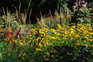 garden example 2